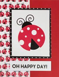 Lady Bug Happy Day